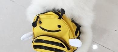 귀요미한 강아지 가방~^